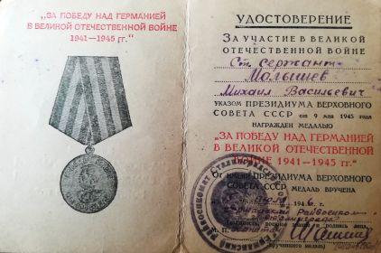 """медаль """"За победу над Германией в ВОВ"""""""