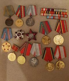 Медаль «За победу над Германией в Великой Отечественной войне 1941–1945 гг.» Орден Красной Звезды Орден Красного Знамени Медаль «За боевые заслуги» Медаль «За победу над Японией» Орден Отечес