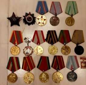двумя медалями «За боевые заслуги», медалью «За оборону Ленинграда», медалью «За победу над Германией», а так же орденом Красной звезды и орденом «Отечественной войны» 2-й степени