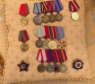 Орден Красной звезды, Орден Отечественной войны, медаль за Отвагу, медаль за Боевые заслуги, медаль за освобождения Праги.