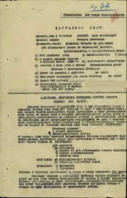 other-soldiers-files/filterimage1_221.jpg