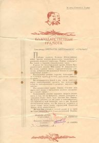 other-soldiers-files/lychakov_blagodarstvennaya_gramota.jpg