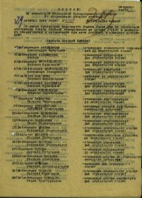 other-soldiers-files/filterimage_1_1093.jpg