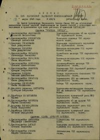 other-soldiers-files/prikaz_o_nagrazhdenii_177.jpg