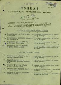 other-soldiers-files/1-ya_stranica_prikaza.jpg