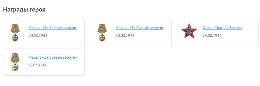 other-soldiers-files/pp_nagrady_geroya.jpg