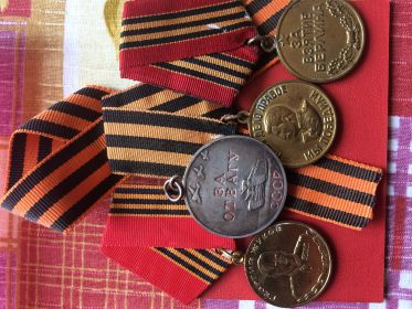 Медали:За отвагу,Георгий Жуков,За взятие Берлина, За победу над Германией