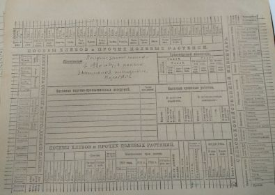 карточка с/х переписи 1920 оборот