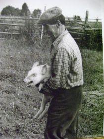 С шустрым любимчиком-поросёнком, который всё время сбегал и шнырял по деревне