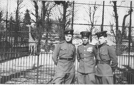 Вена, апрель 1946 г.