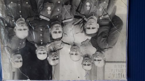 61 Отдельная дивизия