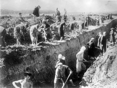 Строительство противотанкового рва на подступах к Ленинграду.
