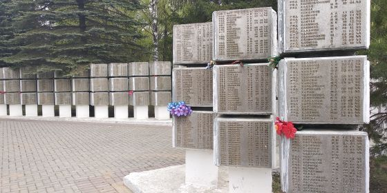 Воинское мемориальное кладбище. г. Великие Луки. Общий вид.
