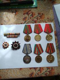 За победу над Японией,За боевые заслуги,30лет Советской Армии и Флота