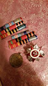 Орден Славы  3 ст, Орден  Отечественной Войны 2 ст. Медали за  освобождение Праги, за победу над Германией