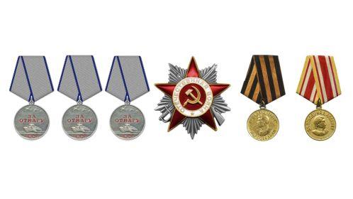 3 медали «За отвагу», Орден Отечественной войны II степени, медаль «За победу над Германией» , медаль «За победу над Японией»