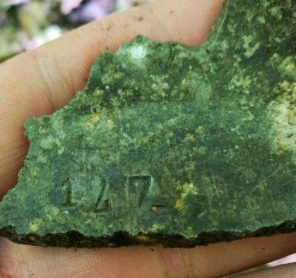 Краснодарские поисковики обнаружили место падения истребителя И-153