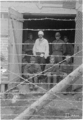 В финском плену умер каждый третий советский военнопленный – работа на фермах спасла жизнь многим