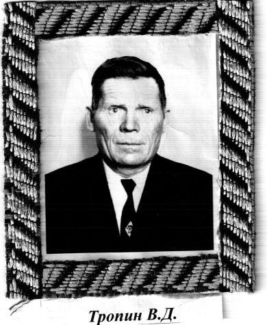 Тропин Владимир Дмитриевич
