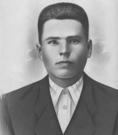 Никитин Николай Михайлович