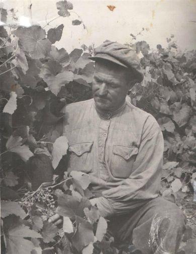 Моисеев Илья Никитович
