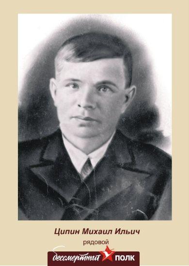 Ципин Михаил Ильич