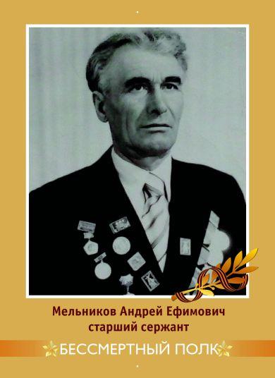 Мельников Андрей Ефимович