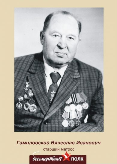 Гамиловский Вячеслав Иванович