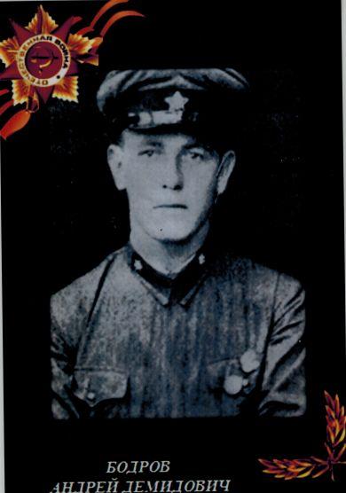 Бодров Андрей Демидович
