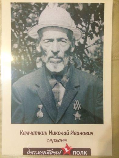 Камчаткин Николай Иванович