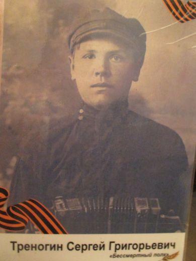 Треногин Сергей Григорьевич