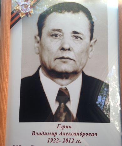 Гурин Владимир Александрович