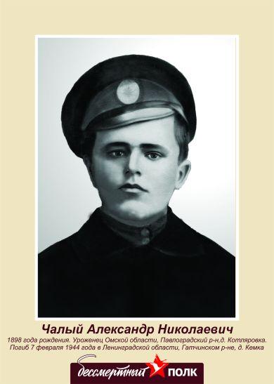 Чалый Александр Николаевич