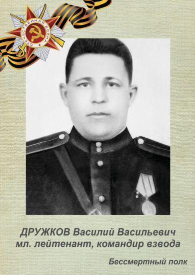 Дружков Василий Васильевич