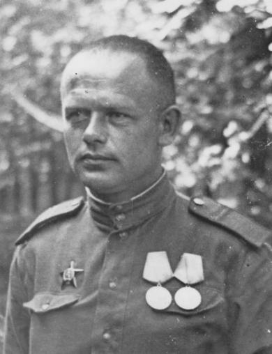 Метелин Владимир Дмитриевич