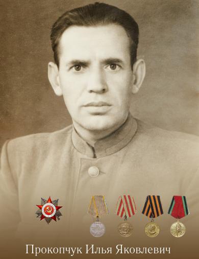 Прокопчук Илья Яковлевич