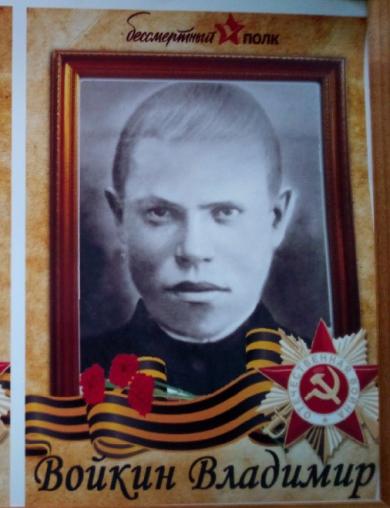 Войкин Владимир Васильевич