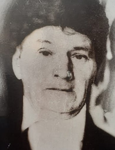 Шипика Нестер Иванович