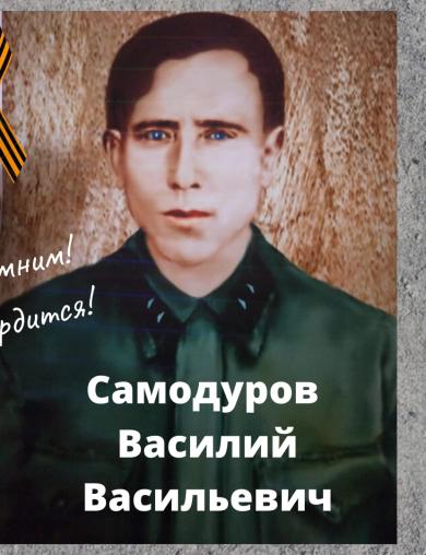 Самодуров Василий Васильевич