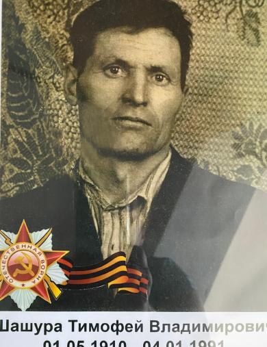 Шашура Тимофей Владимирович