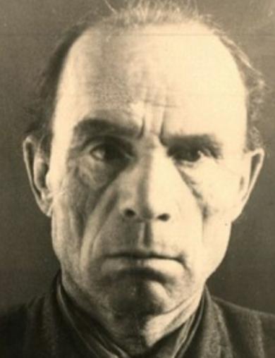 Дмитриев Николай Васильевич