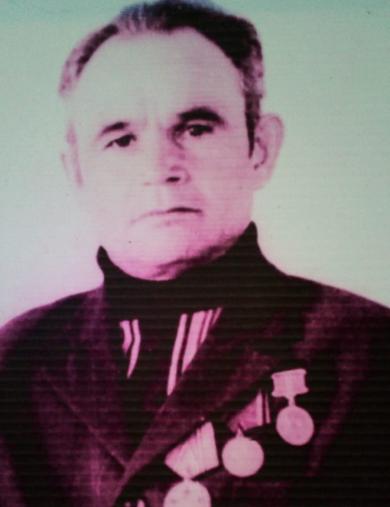 Шамсутдинов Анвер Зиганша