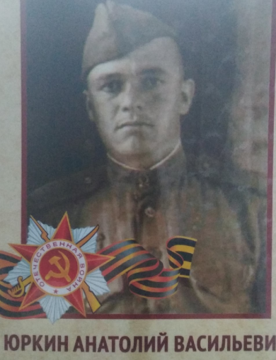 Юркин Анатолий Васильевич