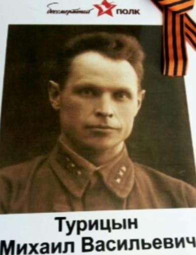 Турицын Михаил Васильевич