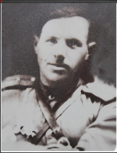 Шеховцов Никита Дмитриевич