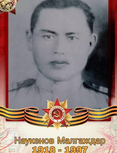 Наукенов Малгаждар