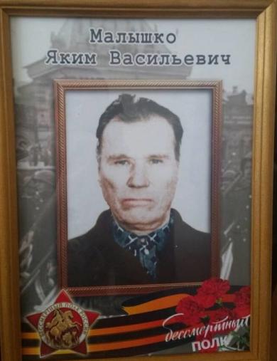 Малышко Яким Васильевич
