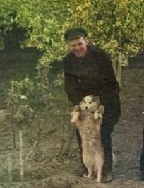 Головачев Иван Филиппович