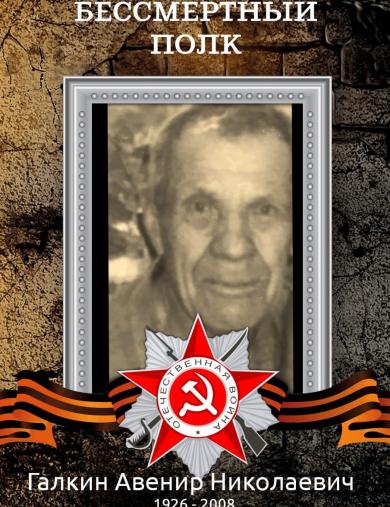 Галкин Авенир Николаевич