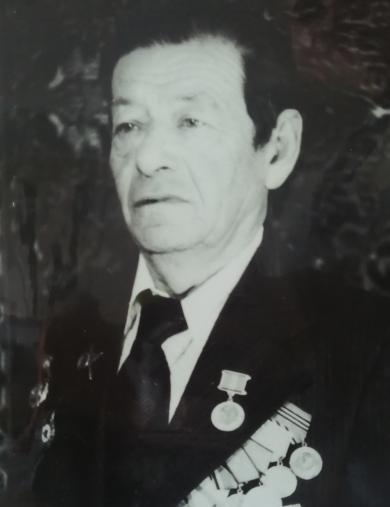 Гринберг Илья Михайлович